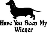Wiener Dog, Have you seen my wiener, Vinyl decal sticker
