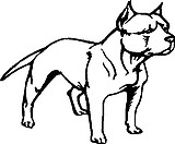 Pit bull, Vinyl decal sticker