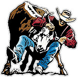 Cowboy Taking down a bull, full color decal