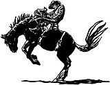 Bucking Horse with rider, Vinyl Cut Decal