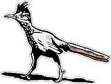 Road Runner, Full color decal