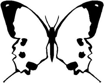 Butterfly, Vinyl cut decal