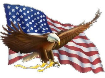Bald Eagle flying in front of a American Flag