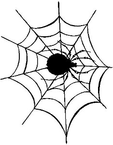 Spider in a Web, Vinyl cut decal