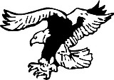 Flying eagle, Vinyl decal sticker
