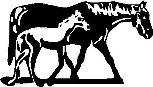 Mom and Baby Horse, Vinyl decal sticker