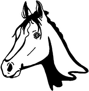 Horse Head, Vinyl Cut Decal