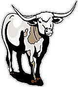 Bull, Full color decal