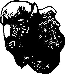Buffalo Head, Vinyl Cut decal