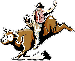 Bull Rider, Full color decal