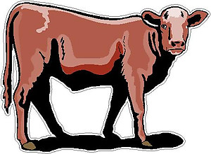 Cow, Full color decal