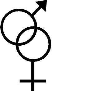 Man and Woman's symbol, Vinyl decal sticker