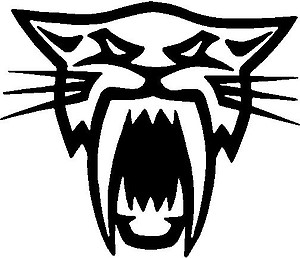 Artic Cat, Vinyl decal sticker
