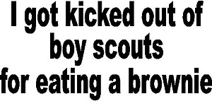 I got kick out of the boy scouts for eating a brownie, Vinyl decal sticker