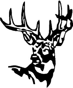 Buck, deer, Vinyl decal sticker