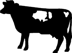 Cow, Vinyl cut decal