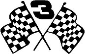 Dale Earnhadt, 3 with checker flags, Vinyl cut decal