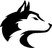 Washington State Huskies, Vinyl cut decal