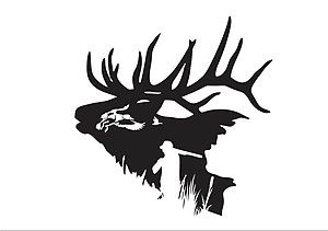 Elk Head Hunting