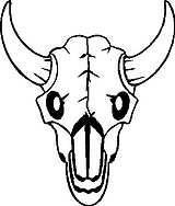 Bull, Skull, Vinyl cut decal