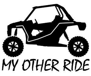 My other ride Rzr