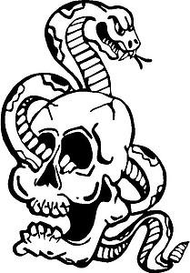 Snake going through a Skull, Vinyl cut decal