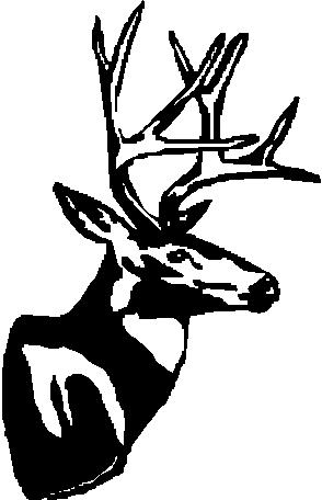 Buck, Deer mount, Vinyl cut decal
