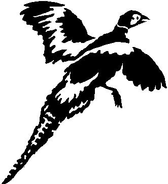 Pheasant, Vinyl cut decal