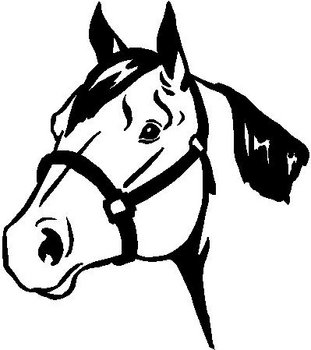 Horse head, Vinyl decal sticker
