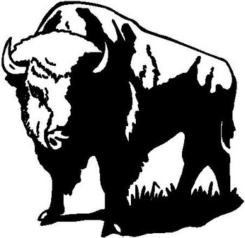 Buffalo, Vinyl cut decal