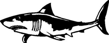 Shark, Vinyl cut decal
