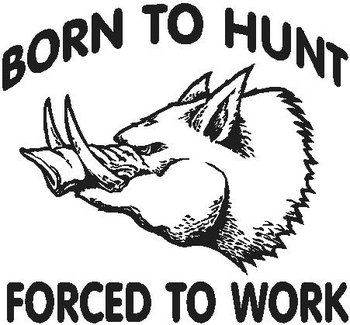 Born to hunt forced to work, Boar, pig, Vinyl decal sticker