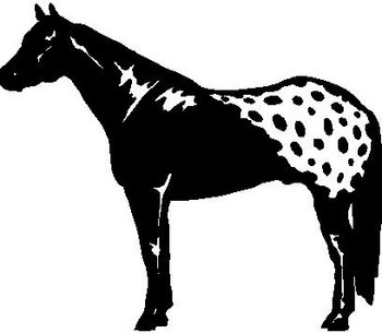 Horse, Vinyl cut decal