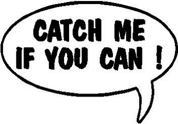 Catch me if you can!, Call out, Vinyl cut decal