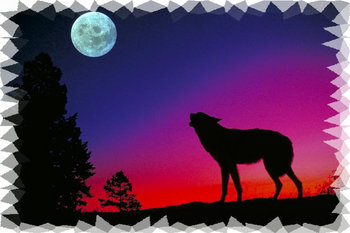 Wolf Mural for your Rv by the Square Foot